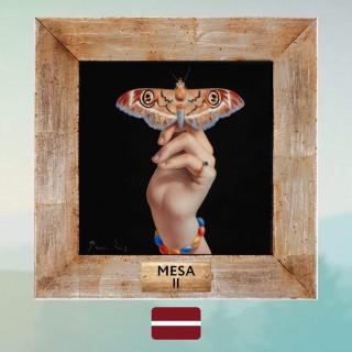 Mesa, II, review
