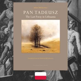 Adam Mickiewicz, Pan Tadeusz, review