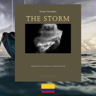 Tomás González, The Storm, review