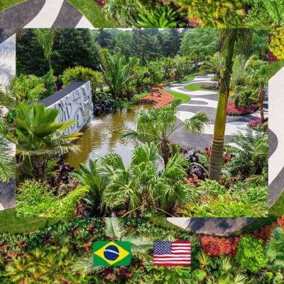 Brazilian Modern, The Living Art of Roberto Burle Marx at New York Botanical Garden, photo