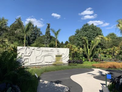 Brazilian Modern, The Living Art of Roberto Burle Marx at New York Botanical Garden, photo