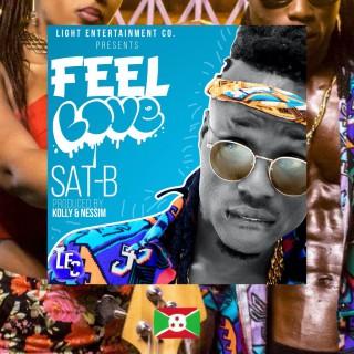 Sat-B, Feel Love, album cover